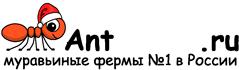 Муравьиные фермы AntFarms.ru - Ярославль
